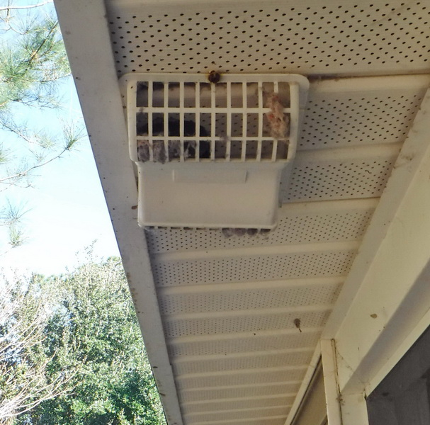 Charleston Home Inspector Discusses Dryer Vents Blue