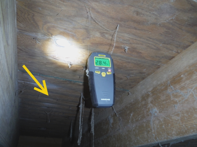 high moisture reading crawlspace